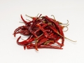 Chile De Arbol w_stems.jpg